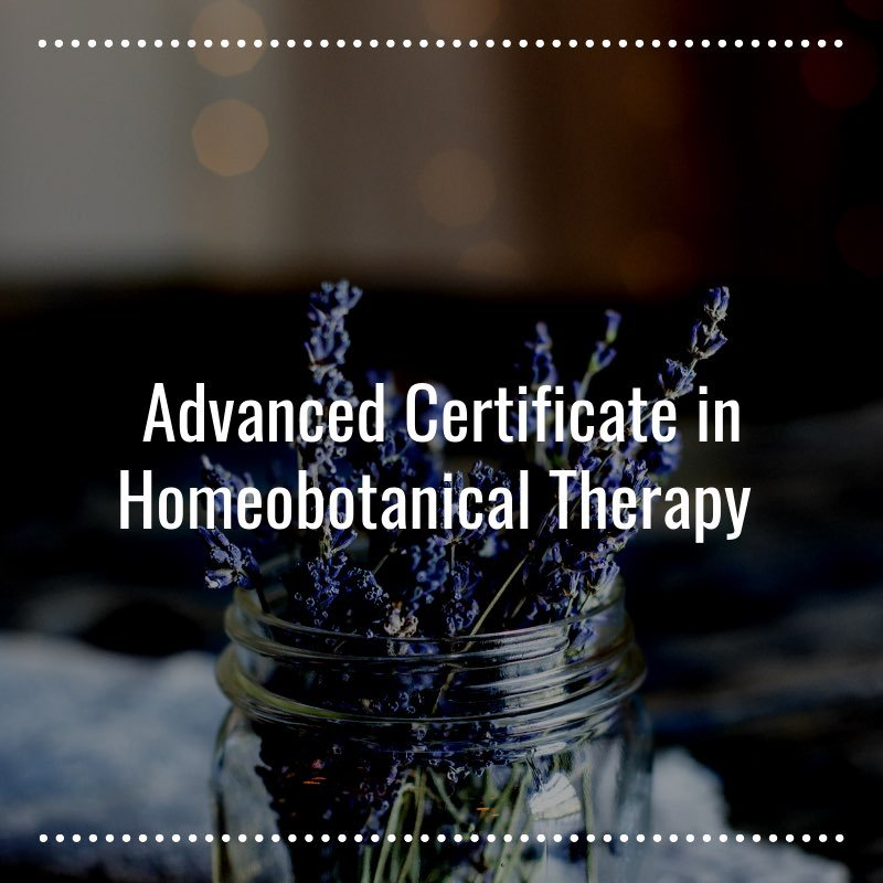 Advanced-Certificate-in-Homeobotanical-Therapy-Learn-More-Homeobotanical-Courses-NZ-Herbal-Energy-Centre