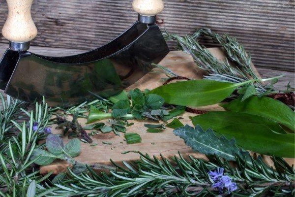 Herbal-Energy-Herbs-Homeobotanical-health-professional
