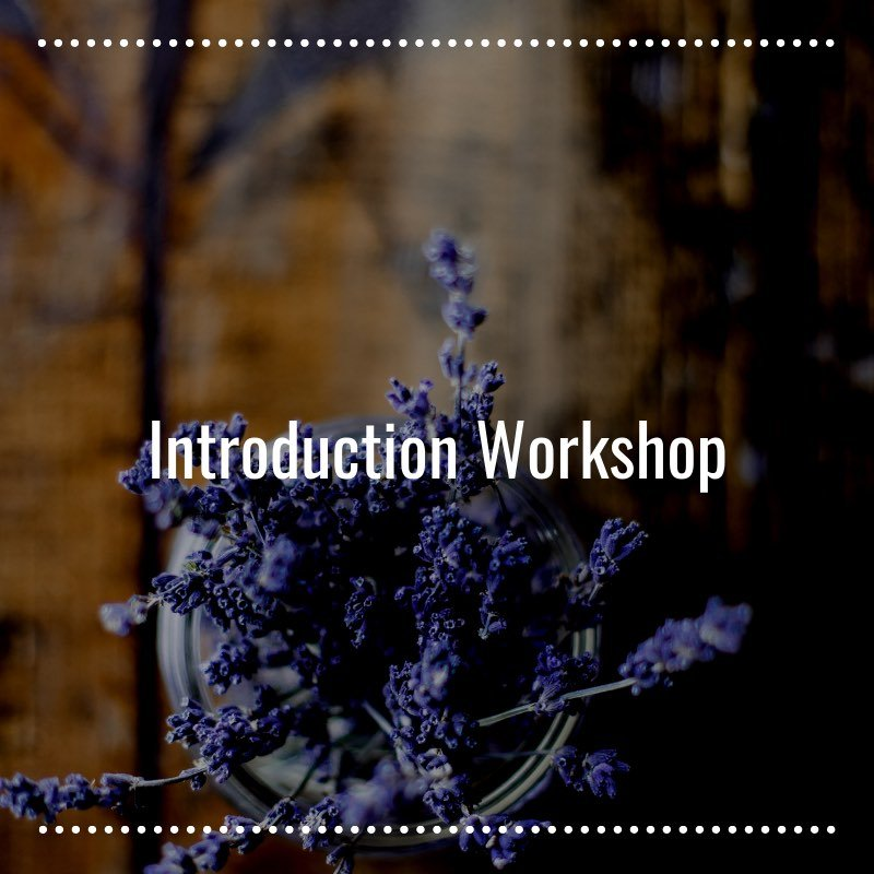 Introduction-Workshop-in-Homeobotanical-Therapy--Learn-More--Homeobotanical-Course-NZ--Herbal-Energy-Centre